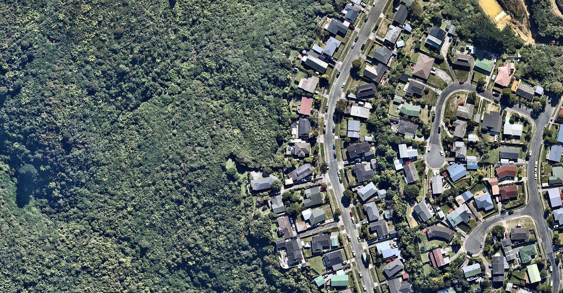 Resources aerial housing and bush view in Kelson, Wellington